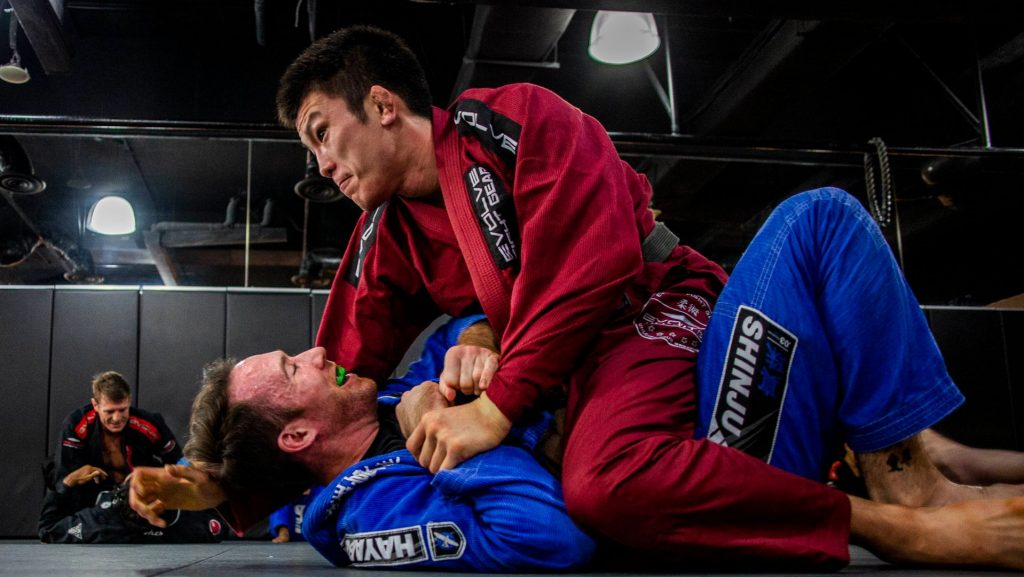 BJJ Mount Escape 1024x577 - Making Sense Of The Most Important Jiu-Jitsu Positions