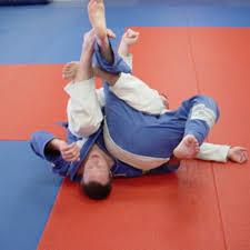 images 5 - Making Sense Of The Most Important Jiu-Jitsu Positions